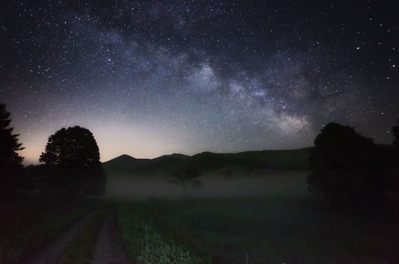 Scenics View Of Dirt Road With Trees And Grass Against Sky With Stars