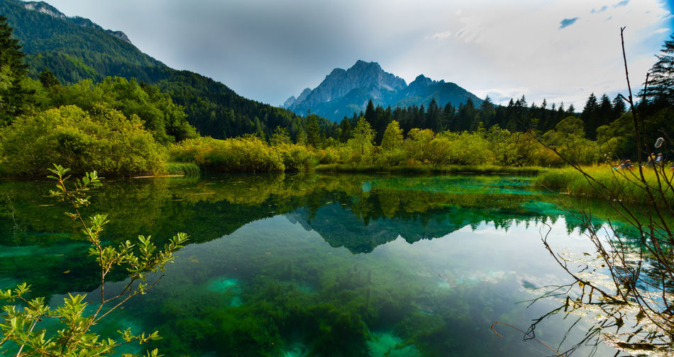 peaceful zelenci-springs in kranjska gora, slovenia EyeEm Best Shots EyeEm Nature Lover Slovenia Zelenci Beauty In Nature Cloud - Sky Green Color Idyllic Lake Mountain Mountain Range Nature No People Non-urban Scene Plant Reflection Reflection Lake Scenics - Nature Sky Spring Tranquil Scene Tranquility Tree Water Waterfront