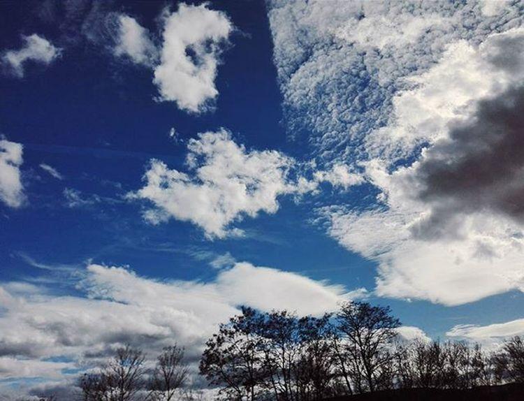 Beautiful Sky Amazing Cloud Lovely Blue Color Germany Photo Photooftheday Insta Instasky Instalike Instagood Instadaily Instamood InstaVsco Photography Phone Huawei P8 P8lite VSCO Vscocam Vscotrees vscogood vscophile vscoczenature vscocze vscoczech