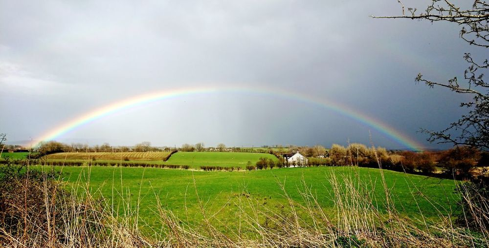Rainbow Full Rainbow End Of The Rainbow Field Ireland Landscape Beauty In Nature Colours colour of life Weather Beautyineverything Love Green Sky Naturelovers Trees And Nature