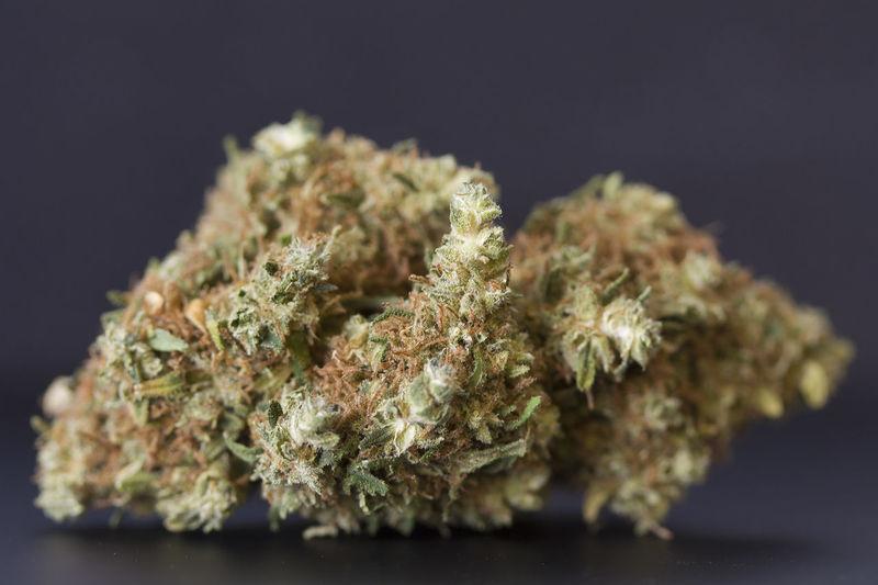 Cali Kush 420 420 Photography Cali Kush Cannabis Dispensary Indica Kush Nug Shot NUGS Sativa Smoke Smoke Weed SMOKE WEED EVERYDAY Smoking Weed Weed Weed Life