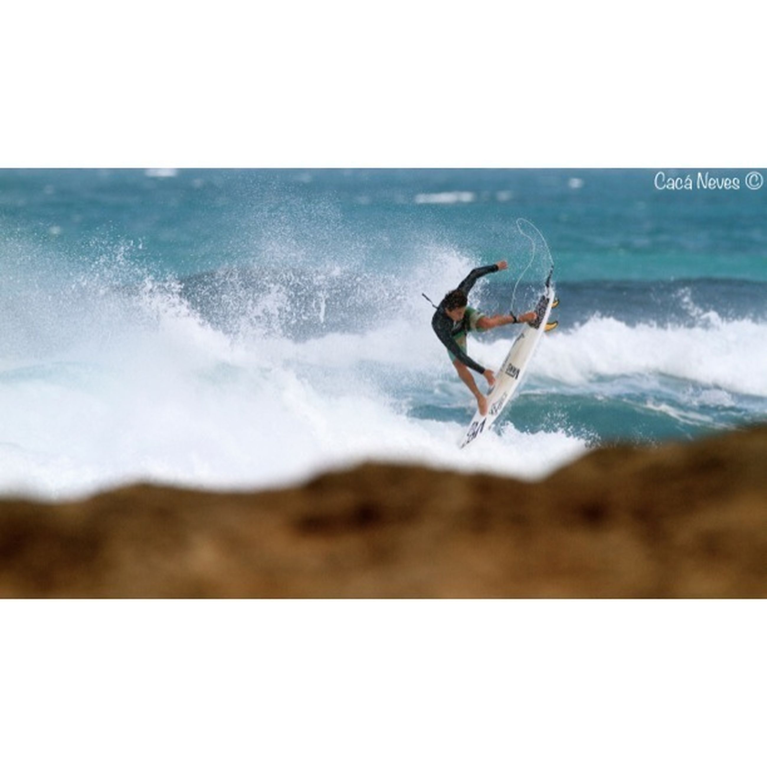 sea, water, animals in the wild, animal themes, wildlife, one animal, wave, horizon over water, bird, nature, seagull, motion, splashing, surf, beauty in nature, beach, waterfront, auto post production filter, full length, clear sky