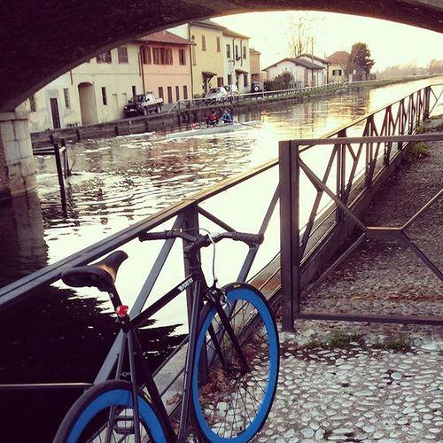 un'oretta senza pensieri anche oggi.. Graziesorellona Gaggiano Sgambata Piedicongelati Chivapiano Instabike Insta_bikers Ciclismo Civuoleunapausa Bike Ride Bikerepublic Itsaspiritualthing Noteveryone