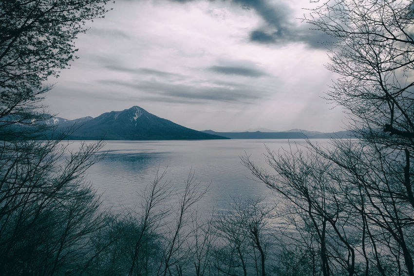 Lake Shikotsu,Hokkaido,Japan Bare Tree Beauty In Nature Cloudy Day Hokkaido,Japan Japan Lake Landscape Mountain Nature No People Outdoors Scenery Scenics Shikotsu Lake Sky Tranquil Scene Tranquility Tree Water The Great Outdoors - 2017 EyeEm Awards Lost In The Landscape Visual Creativity The Traveler - 2018 EyeEm Awards The Great Outdoors - 2018 EyeEm Awards