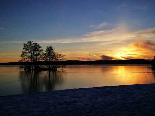 Sunset Lake Trees Sky Nature Reflection