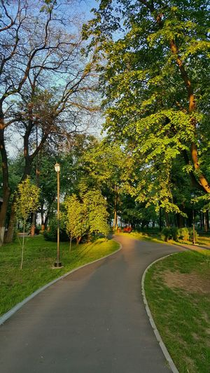 Walking in the park 🌳🌳🌳 Check This Out Malephotographerofthemonth Hanging Out Galaxys6 EyeEm Best Shots EyeEm Nature Lover Galati City EyeEmBestPics Check This Out At The Park