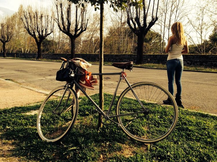 Hugging A Tree Fixed Bike