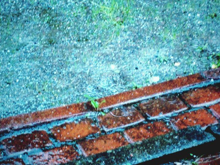 This Is Summer Rain Finland