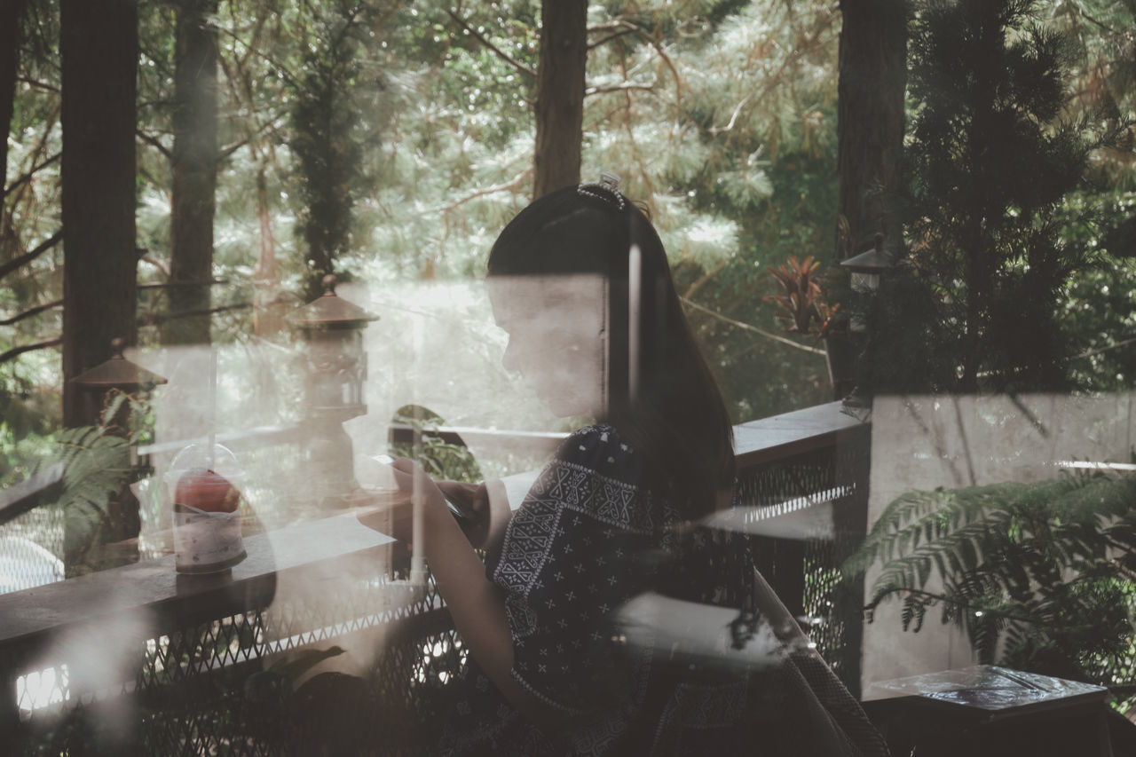 PEOPLE SITTING IN GLASS WINDOW WITH TREES