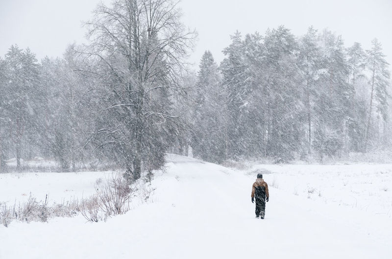 Lonely boy walking road at winter landscape with heavy snowing in Finland Snow Winter Cold Temperature Real People One Person Rear View Nature Lifestyles Beauty In Nature Leisure Activity Covering Extreme Weather Outdoors Walking Day Snowing Warm Clothing Finland Storm Windy Window Alone Road Landscape Nature