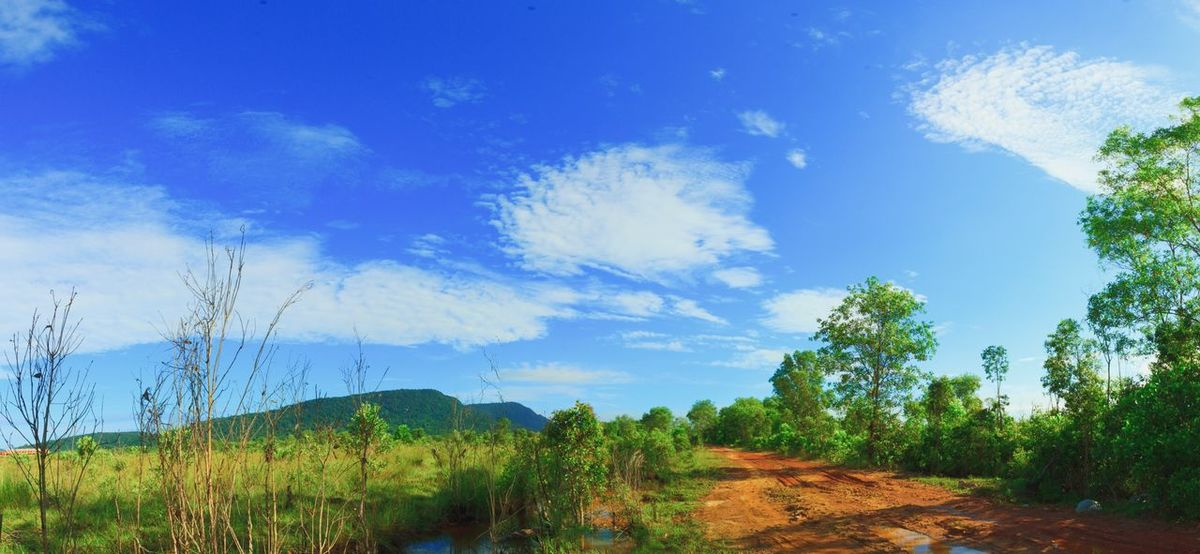 Tree Nature Sky Tranquility Green Color Blue Cloud - Sky Outdoors Landscape Phu Quoc Phuquoc Phuquocisland Peaceful View