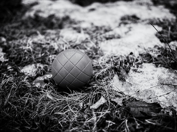 Childrens Bocce ball in the grass with ice. B&w Ball Black & White Bocce Ball Bocci Bal Children Bocci Close-up Grass No People Outdoors Single Object Sphere Shades Of Winter
