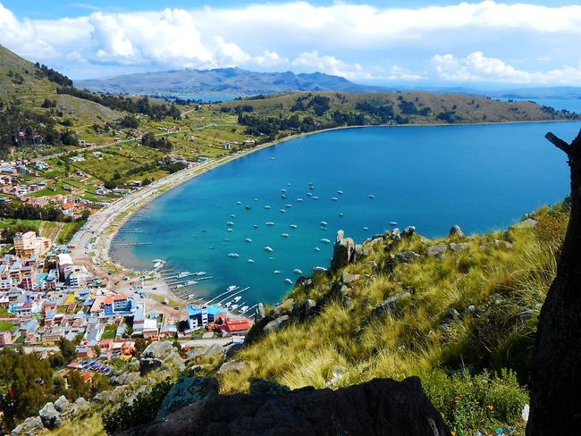 Traveling Home For The Holidays Copacabana Bolivia Landscape Lake Travel Water Tourism Blue Travel Destinations Vacations Tree Mountain Range Beauty In Nature Nature Outdoors Sky Cloud - Sky Scenics Mountain Adventure Nautical Vessel Titikakalake 3.800 Mts. Hi. From A Mountain View