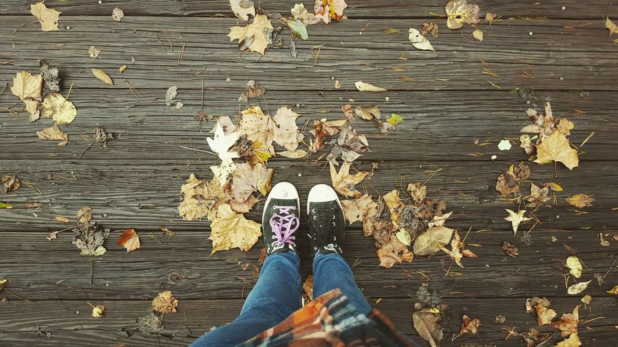 """""""We're all just story's in the end right? Make yours a good one."""" Picnic Walking Around Escaping Fall Beauty Fall Colors Changing The World One Step At A Time Photography Passion"""