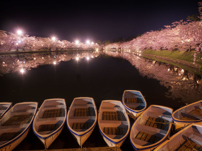 High angle view of illuminated cherry blossoms  by japanese castle ruins at night