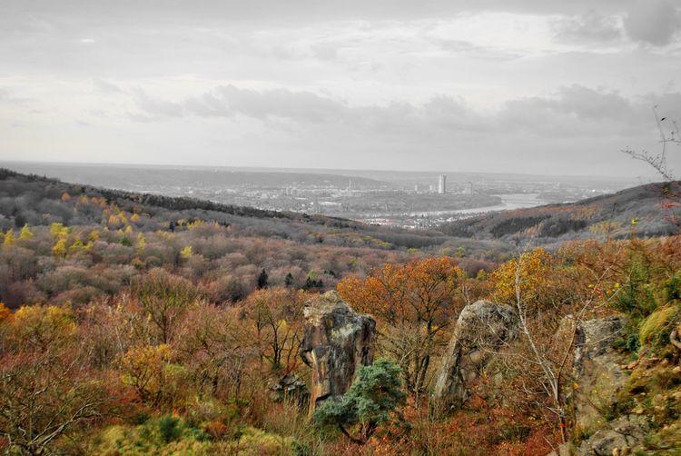 Showcase: November Stenzelberg Blick Auf Bonn Herbst Autumn