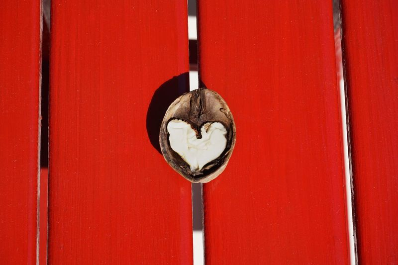 Walnut Heart Red Composition Intelligence