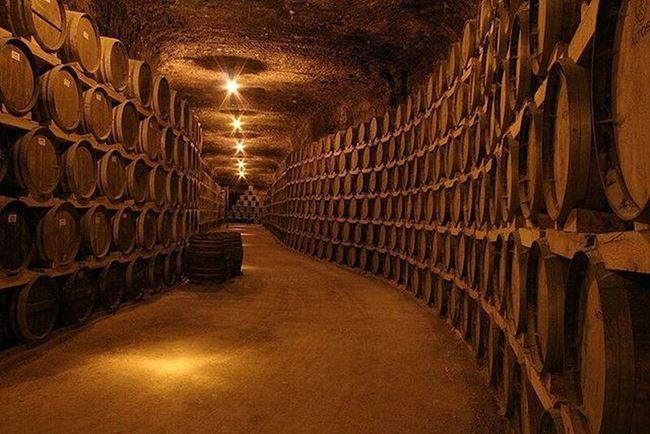 Pocas bodegas veréis que os impresione tanto como @verumbodegas. No te tienes que ir a Burdeos ni Borgoña , Oporto o Larioja ... En Tomelloso , a menos de 2 horas de Madrid . Enoturismo Vino Wine Bodega Verum Cellar Iger Igerswine Igersclm