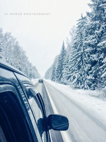 Car Transportation Mode Of Transport Snow Land Vehicle Tree Cold Temperature Winter Car Interior Nature Vehicle Interior Road No People Car Roof Day Mountain Windscreen Beauty In Nature Outdoors