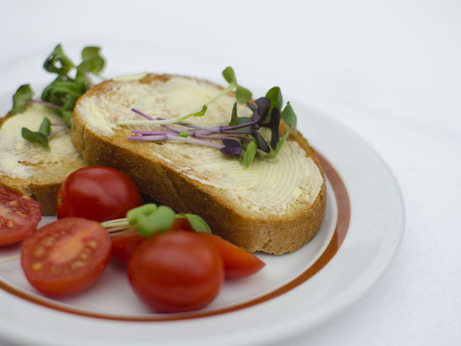 Close-up Day Food Food And Drink Freshness Healthy Eating Indoors  Microgreens No People Plate Ready-to-eat Still Life Toasted Bread Tomato Vegetable White Background