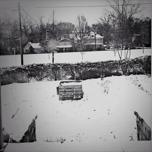 Snow Black&white 電柱写真クラブ Electrical Utility Pole Club Wwwdc