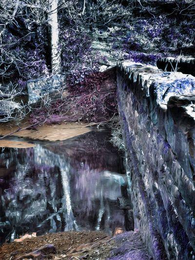 Localscene Standing On A Bridge Stone Bridge Water Tree Waterfall Motion Long Exposure Power In Nature