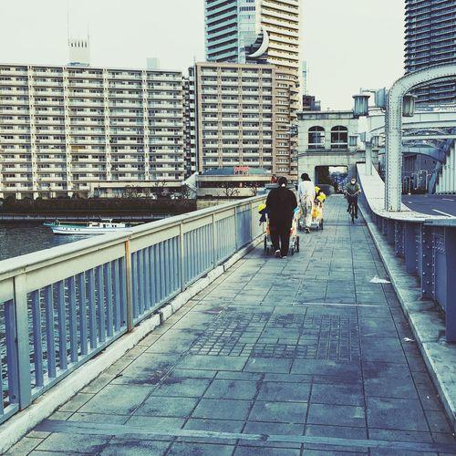 Adapted To The City Streetphotography Street Photography Tokyo Days Tokyo Street Photography No Standard World Bridge Tokyo,Japan