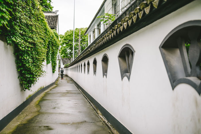 Narrow Street in the Town in Zhujiajiao Ancient Town Shanghai Ancient Town Architecture Building Exterior Built Structure City Day Narrow Street Nature Outdoors Sky The Way Forward Tree