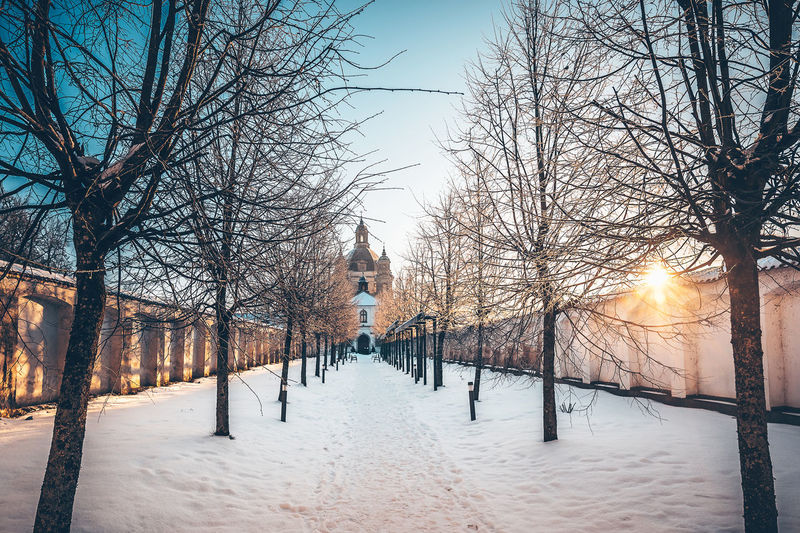 Tree alley Church Pazaislis Monestery Architecture Bare Tree Beauty In Nature Branch Building Exterior Clear Sky Cold Temperature Day Frozen Illuminated Nature No People Outdoors Scenics Sky Snow Sun Tree Tree Alley Weather Winter