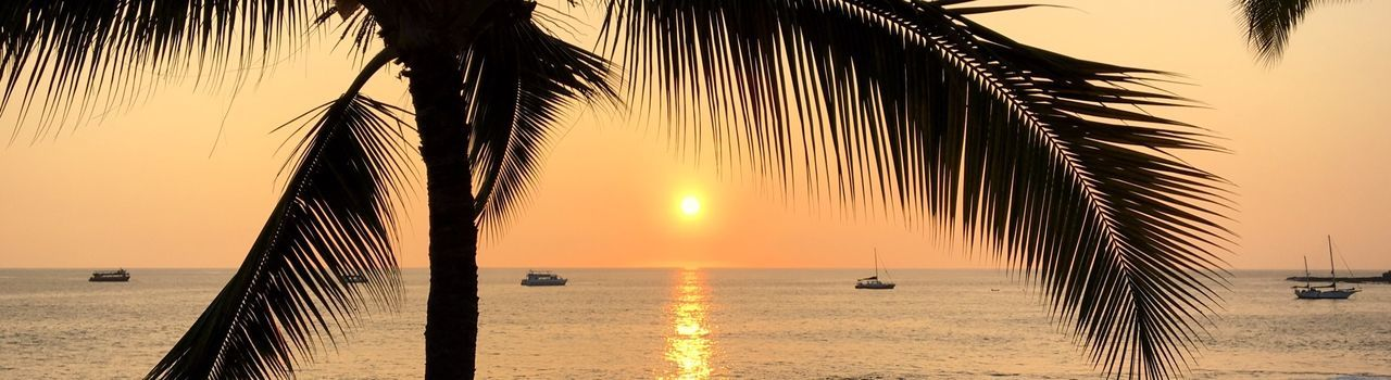 Panoramic View Of Silhouette Palm Tree With Sea Against Orange Sky During Sunset