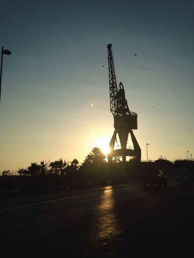 Sunset Grua Atardecer Popular Photos 🌾⛅️