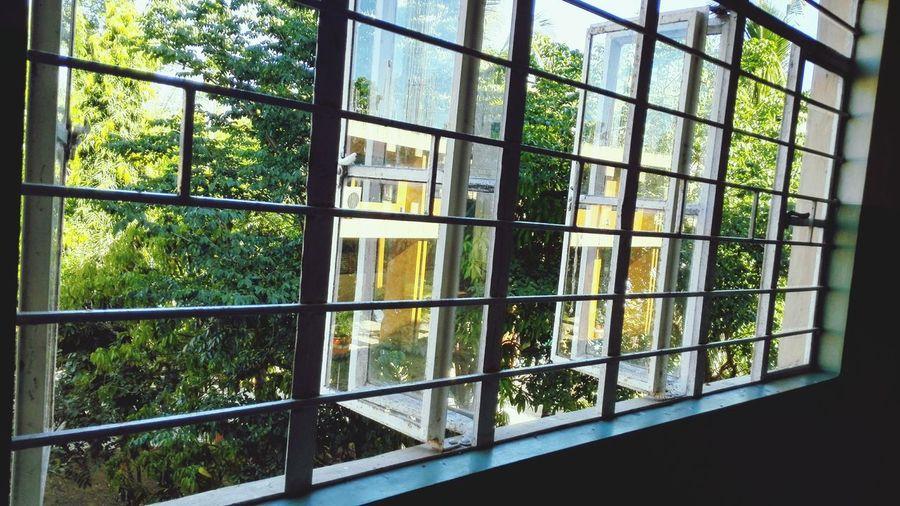 Windows At Second Floor