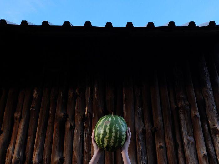 Water that melon.