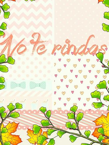 No te rindas nunca Quotes Animo NoTeRindas Fibromyalgia Quoteoftheday Quotes♡ Quotesandsayings