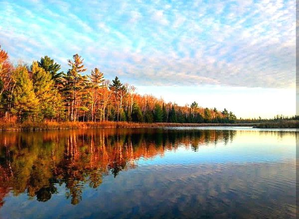 Outdoors Nature Canadiannature Water Countrylife Country Living Canada Iamcanadian Ontario Pond Forests Relaxation Peaceful Reflection Autumn 2015 Autumn Colors Autumn Leaves Autumn🍁🍁🍁 Showcase July Home Backyard Home Is Where The Art Is