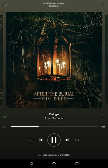 Listening To Music Music Listen To Music Musicoftheday Song Musiclover Today Nostalgia Mood Saturdaymood Musicaddict Picoftheday Photooftheday Like4like Weekend Metal Metalhead ProgressiveMetal Metalmusic AlbumArt DigDeep After The Burial