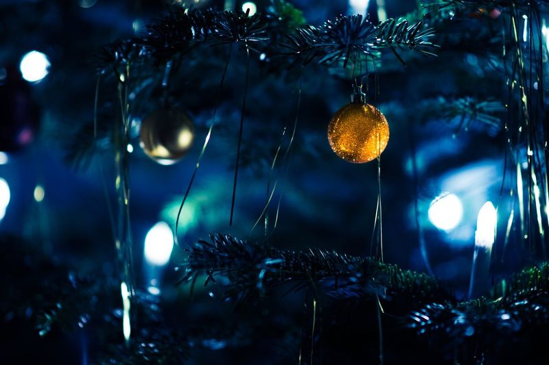 Christmas is over... Christmas Tree Tree Christmas Lights Christmas Decoration Night Christmas Focus On Foreground Illuminated Christmas Bauble Christmastime Blue Orange Orange Color Light Light And Shadow Bokeh Tinsel  Lametta Branch Fir Tireless Christmas Lights Defocused Christmas Ornament Decoration