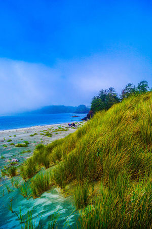 Beach Beauty In Nature Blue Clear Sky Coastline Copy Space Day Grass Grass Grassy Green Color Growth Horizon Over Water Idyllic Nature Plant Scenics Sea Sky Tranquil Scene Tranquility Water • The Great Outdoors – 2016 EyeEm Awards