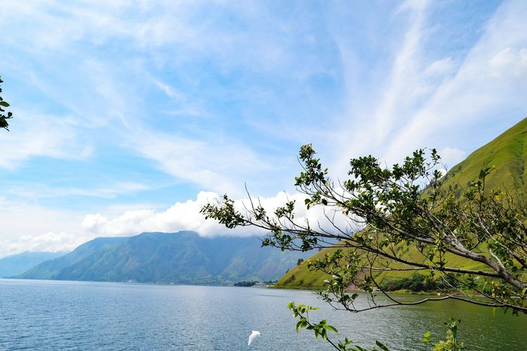 Lake Toba Nort Sumatera Indonesian Montains    Montains And Water  Montain Collection Lake Toba Lake Toba Indonesia Lake Toba Landscape Cloud - Sky Cloud Waterfront Water_collection Tree Mountain Lake Water Sky Landscape Mountain Range Pine Woodland Needle - Plant Part Banff National Park  WoodLand Coniferous Tree Birch Tree Woods
