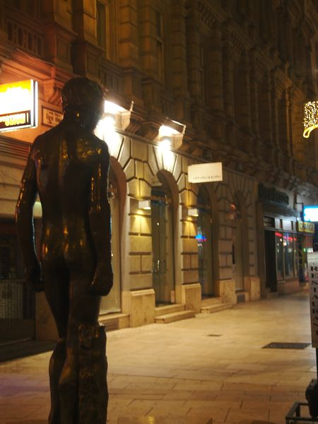 Hungary Budapest Night Walk Around The Town Statue In The City Looking To The Other Side Memory Trip Cold Weather Street Light Statue Colection From Behind Bronze Statue Waiting For You Lonely Statue Quiet Moments Thoughts And Memories