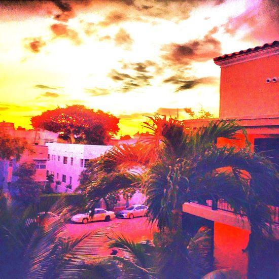 Miami Beach Fl🇺🇸☀️ HDR EyeEm Gallery The Traveler - 2015 EyeEm Awards My Smartphone Life EyeEm EyeEm Best Shots EyeEmBestPics Miamiheat #teamheat #heatstreak Miami Heaven 🇺🇸☀️FL EyeEmBestEdits