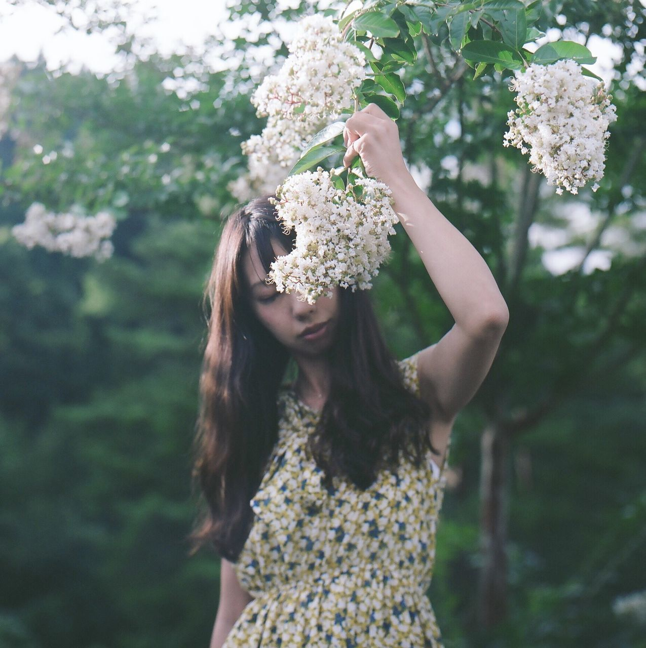flower, one person, young adult, focus on foreground, real people, young women, day, nature, outdoors, wearing flowers, fragility, tree, standing, freshness, beauty in nature, bride, close-up, people