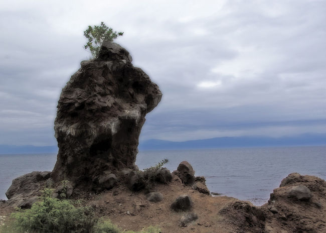 Olympic National Park Strait Of Juan De Fuca Beach Beauty In Nature Cloud - Sky Day Horizon Horizon Over Water Hurricane Ridge Land Nature No People Olympic National Forest Outdoors Plant Port Angeles Washington Rock Rock - Object Scenics - Nature Sea Sky Solid Tranquil Scene Tranquility Water