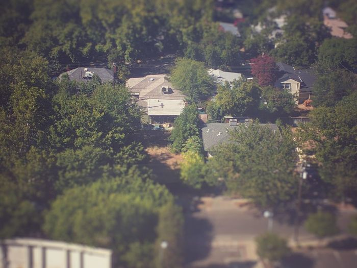 City of trees Treescollection Treescape House And Trees No People Residential Neighborhood Selective Focus Green Colors Road Looking Down Rooftops Trees In Background Treelovers Air Conditioning Units Power Lines