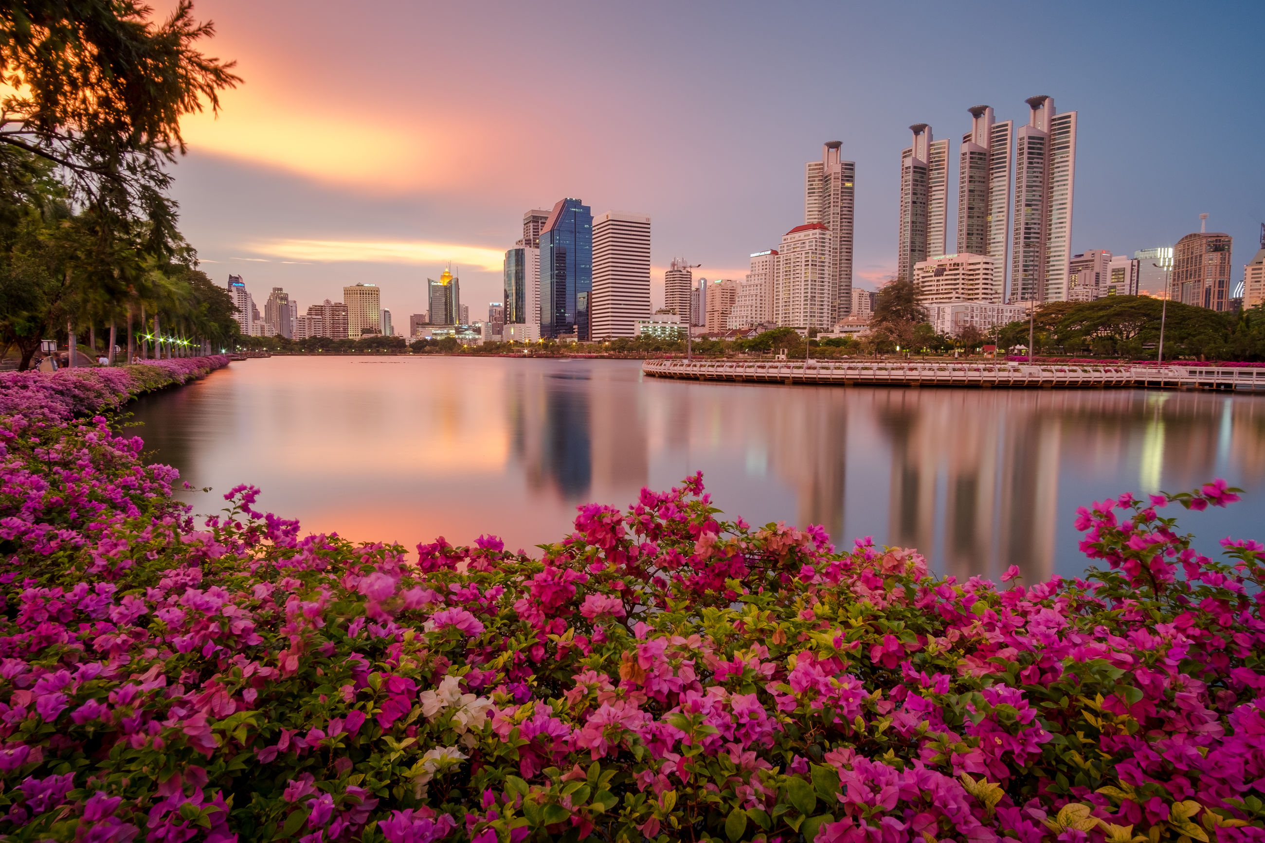 reflection, building exterior, city, architecture, water, sunset, modern, skyscraper, built structure, travel destinations, cityscape, sky, no people, river, outdoors, urban skyline, tree, nature, day