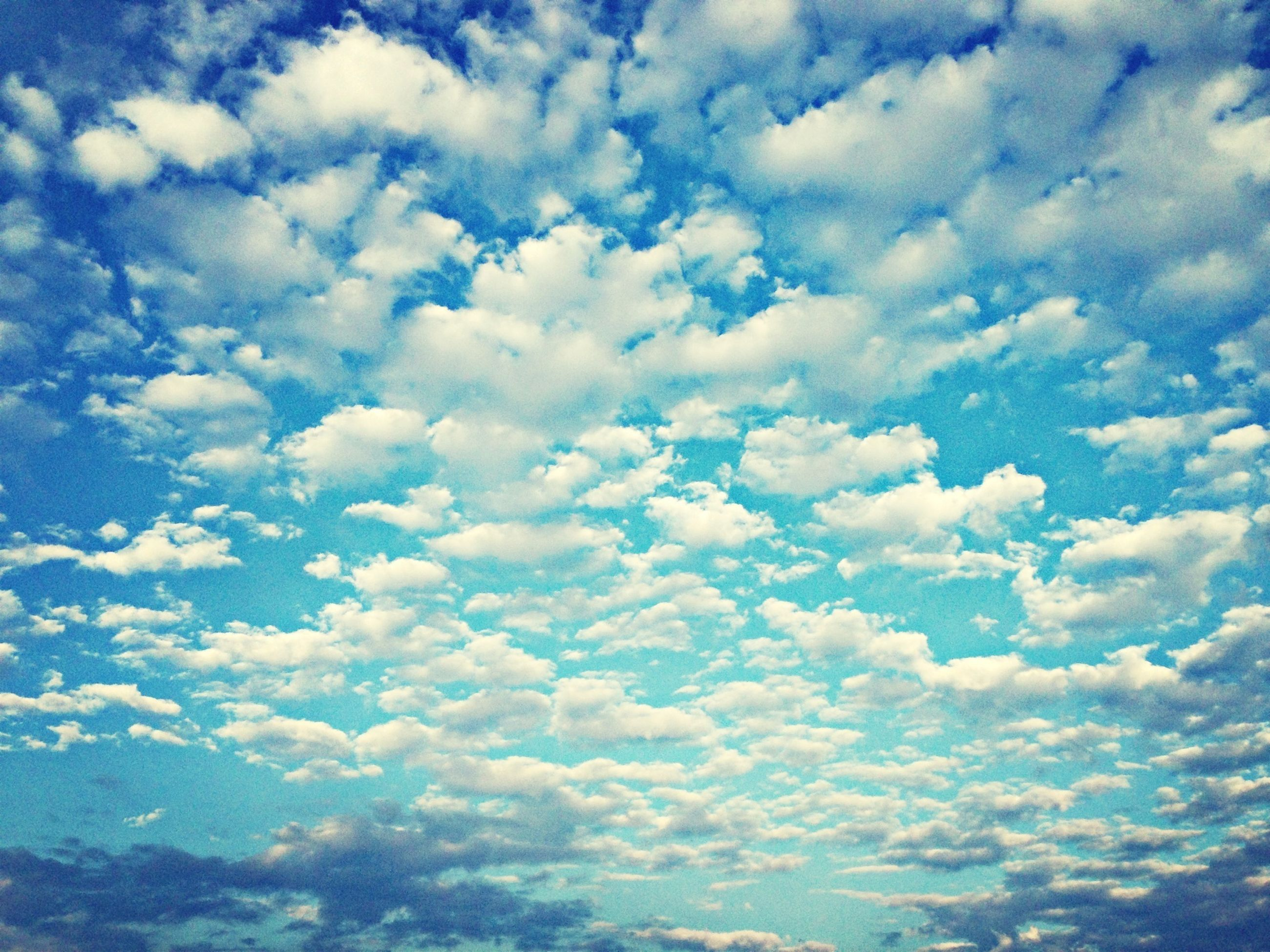 sky, cloud - sky, beauty in nature, scenics, blue, tranquility, tranquil scene, nature, sky only, cloudscape, cloudy, white color, low angle view, backgrounds, cloud, idyllic, full frame, weather, day, outdoors
