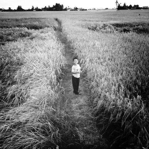 Portrait of boy standing on grassy field