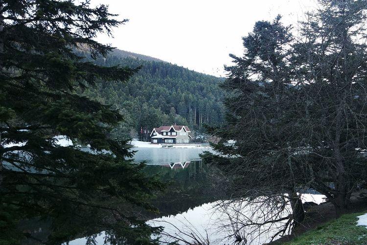 Turkey Bolu  Bolu Golcuk Golcuk Taking Photos Nature Landscape Iztv Enjoying Life