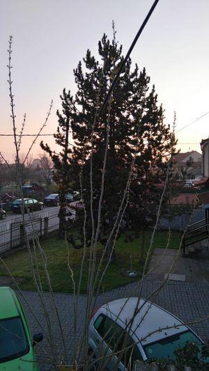 Beautiful Sunrise Morning Sky