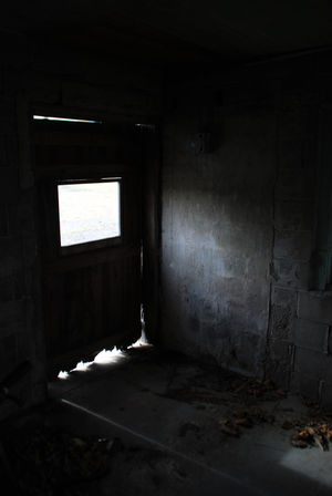 Abandoned Bad Condition Dark Day Domestic Room Door Farmlife Farmliving Home Improvement Home Interior Indoors  Jersey New Jersey No People South Jersey The Garden State Window